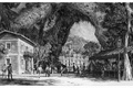 Картинка Dishonored 2, City Park, Bethesda, Arkane Studios