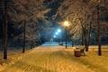 Картинка парк, скамейка, дорога, bench, midnight, скамейки, настроение, beautiful scene, ночь, фонарный столб, night, фонарь, benches, ...