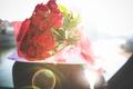 Картинка цветы, лепестки, розы, подарок, красные