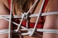 Картинка girl, bdsm, bound, rope, red bra, bondage, prisoner, tied, captive, restrained