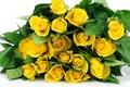Картинка листья, розы, букет, желтые, белый фон, бутоны