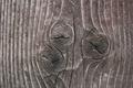 Картинка дерево, сучки, текстура