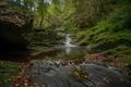 Картинка лес, река, речка, Арденны, осень, Belgium, Бельгия, водопад, Арденнский лес, Ardennes, Hoëgne River