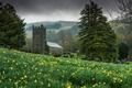 Картинка деревья, цветы, природа, фон, widescreen, обои, часы, луг, wallpaper, часовня, trees, nature, широкоформатные, flowers, background, ...