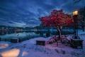 Картинка снег, Ставангер, зима, огни, Норвегия, Ругаланн, фонарь, вечер сумерки