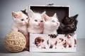 Картинка коробочка, клубок, котята