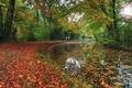 Картинка осень, парк, река
