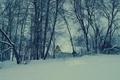 Картинка деревья, дом, снег, природа