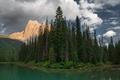 Картинка ели, озеро, горы, пейзаж, лес