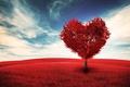Картинка поле, небо, облака, любовь, дерево, романтика, сердце, love, День святого Валентина, sky, field, heart, clouds, ...