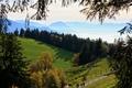 Картинка луга, поля, горы, Австрия, туман, деревья, Lochau, вид, даль, солнце, ветки, осень, лес