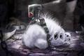 Картинка игрушка, пленник, листы, цепи, арт, кролик, белый, записи, пушистый, зверек, паутина, зайчик, пуговица, пытки, пыль