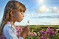 Картинка цветы, flowers, ребенок, дети, детство, child, summer, счастья, little girl, happiness, sky, облака, childhood, children, ...