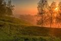 Картинка пейзаж, небо, природа, деревья, трава, облака, закат