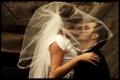 Картинка Поцелуй, Невеста, Свадьба, Фата