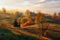 Картинка поля, огороды, домики, туман, деревья, заборы, солнце, осень, простор