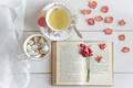 Картинка сахар, лепестки, чай, книга, роза