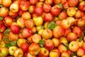 Картинка fruit, standard, apples