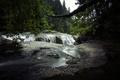 Картинка обрыв, течение, водопад, деревья, Вашингтон, Lewis River Falls, ветки, река, лес, США