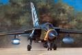 Картинка рисунок, арт, истребитель-бомбардировщик, Panavia, Tornado, боевой реактивный самолёт с крылом изменяемой стреловидности, IDS