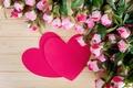 Картинка розовый, Heart, сердце, Peonies, Two, цветы