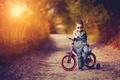 Картинка ребёнок, велосипед, природа, дорога, костюм, вечер, мальчик, закат