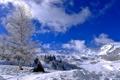 Картинка зима, небо, облака, снег, деревья, горы, склон