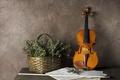 Картинка цветы, скрипка, музыка