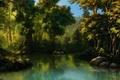 Картинка камни, чаща, вода, арт, болото, лес