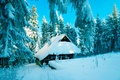 Картинка зима, Польша, снег, лес, хижина