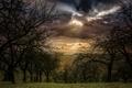 Картинка тучи, вид, поле, пашня, деревья, облака