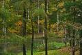 Картинка Природа, Осень, Озеро, Деревья, Лес, Листья, Парк