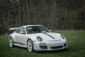 Картинка 911, 4.0, Porsche, white