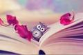 Картинка лепестки, страницы, книга, часы, сова