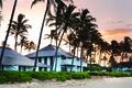 Картинка пляж, город, пальмы, дома