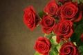 Картинка цветы, flowers, red, roses, красные, розы