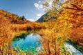 Картинка лес, осень, желтые, озеро, Китай, деревья, Jiuzhai Valley National Park, горы, солнечно