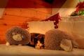 Картинка кровать, подушки, Кошка, спит, овечки