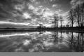 Картинка Черно-белая, деревья, отражение, вода