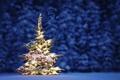 Картинка ёлка, праздник