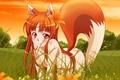 Картинка Девушка, волчица, хоро, волчица и специи, взгляд