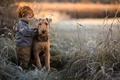 Картинка собака, друзья, мальчик