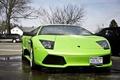 Картинка murcielago, суперкар, Lamborghini