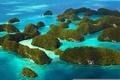 Картинка океан, багамы, остров, растения