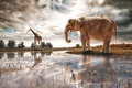 Картинка фантазия, слон, река, арт, жираф