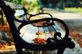 Картинка скамейка, природа, парк, осень, листья