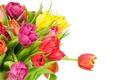 Картинка букет, colorful, тюльпаны, flowers, beautiful, tulips, spring