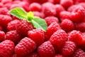 Картинка листики, ягоды, малина, мята