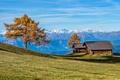 Картинка осень, Южный Тироль, горы, Италия, дом, дерево
