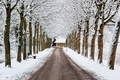 Картинка winter, road, snow, trees, house